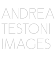 Andrea Testoni